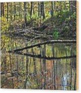 Pond Reflects Wood Print