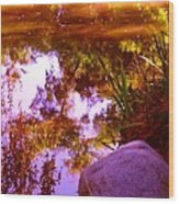 Pond Reflextions Wood Print