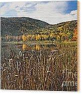 Pond With Autumn Foliage  Wood Print