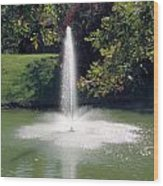 Pond With Water Feature Wood Print