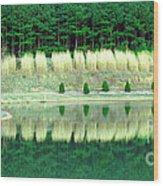 Ponderings Wood Print