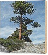 Ponderosa Pine And Granite Boulders Wood Print
