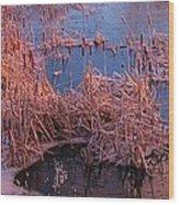 Ponds Edge Wood Print