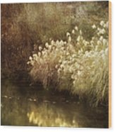 Pond's Edge Wood Print