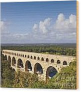 Pont Du Gard Roman Aqueduct Languedoc Roussillon France Wood Print by Colin and Linda McKie