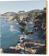 Pont Lobos Cove Wood Print