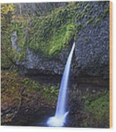 Ponytail Falls Wood Print