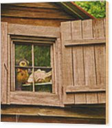Pooh In The Attic Wood Print