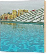 Pool And Roof Of Alexandria Library-egypt  Wood Print