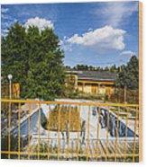 Pool Garden Wood Print