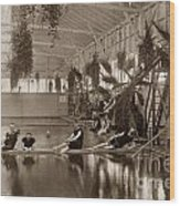 Pool In The Del Monte Bath House Monterey Circa 1885 Wood Print