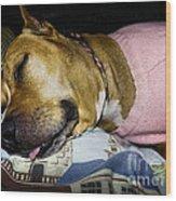 Pooped Pup Wood Print