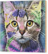 Pop Cat Wood Print