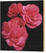 Pop Of Pink Wood Print