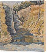 Poplar Cove Wood Print