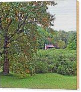 Poplar Tree In The Valley Wood Print