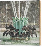 Popp Fountain In City Park New Orleans Wood Print