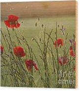 Poppies At Sundown Wood Print
