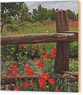 Poppies At The Farm Wood Print