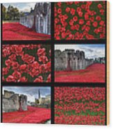 Poppies At The Tower Collage Wood Print