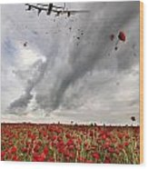 Poppies Dropped  Wood Print