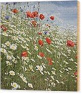 Poppies Et Al Iv Wood Print