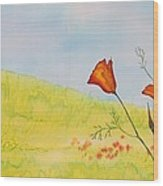 Poppies In A Field Wood Print