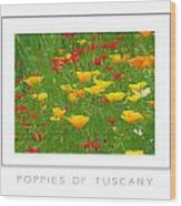Poppies Of Tuscany Poster Wood Print