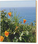 Poppies On The Pacific Wood Print