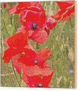 Poppies Vi Wood Print