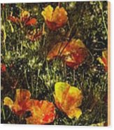 Poppies Will Make Them Sleep Wood Print