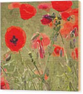 Poppies X Wood Print