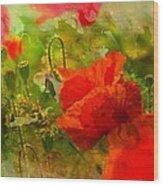 Poppin Poppies Wood Print