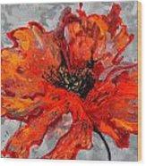 Poppy 41 Wood Print