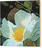 Poppy 5 Wood Print