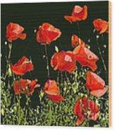 Poppy Art Wood Print