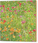 Poppy Confusion Painterly Textured Wood Print
