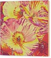 Poppy Extravaganza Wood Print