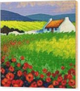 Poppy Field - Ireland Wood Print by John  Nolan