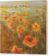 Poppy Field  Triptic Right Wood Print