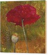 Poppy II Wood Print