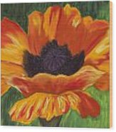 Poppy Number 2 Wood Print