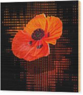 Poppy Passion Wood Print