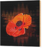 Poppy Passion Square Wood Print