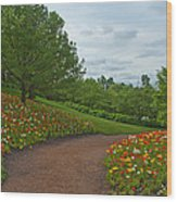 Poppy Path Wood Print