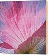 Poppy Rays Collage Wood Print