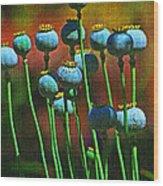 Poppy Seed Pods Wood Print