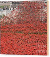 Poppy Tribute Of The Century. Wood Print