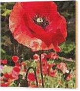 Poppy Watercolor Effect Wood Print