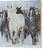 Populations Of Horses Wood Print